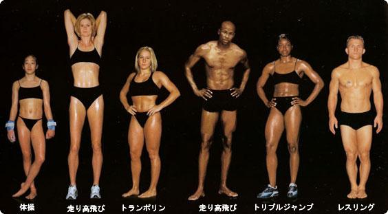「競技別 筋肉」の画像検索結果