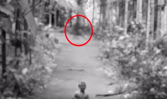 これが都市伝説となった「シャドーピープル」なのか?少年が森の中で見たうすぼんやりな影の正体は?