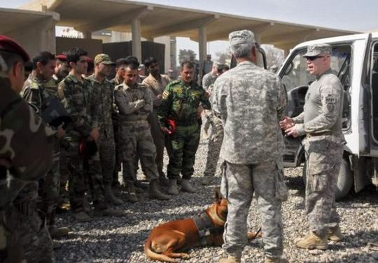 dogs_in_army_06