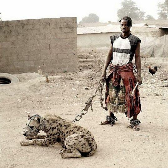 african_wild_pets_01