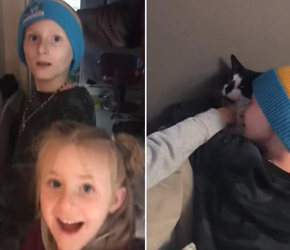 死んだと思っていた猫が生きていた!死亡認定された猫が再び家族の元に現れる