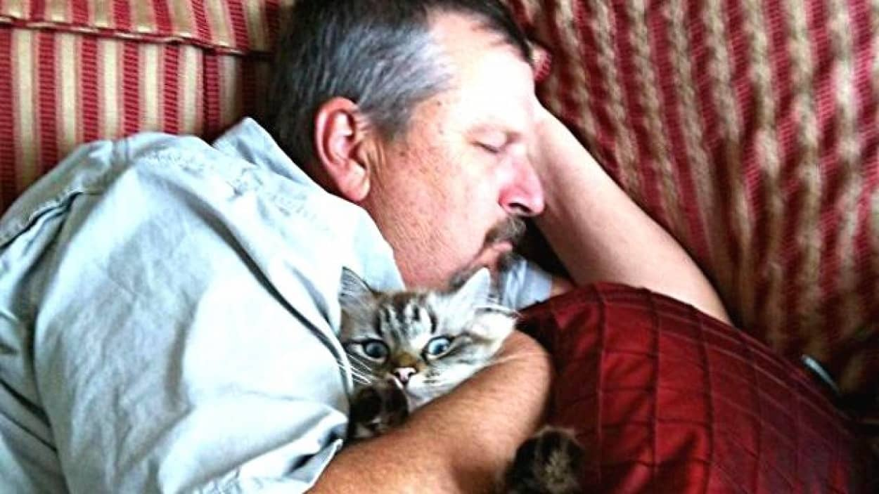 people-who-didnt-want-cats-14_ea