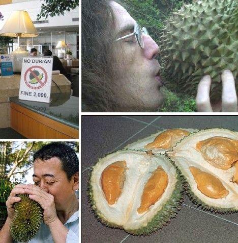 amazing_fruits_9