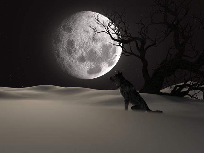 2020年12月30日は今年最後の満月
