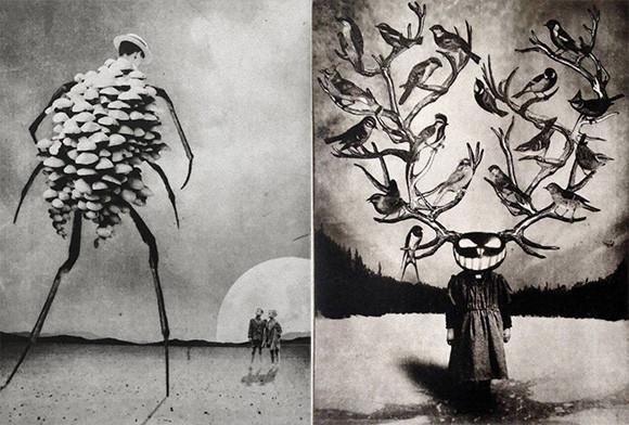 シュールファンタジー。植物と動物が絡み合う異世界を表現した写実的絵画