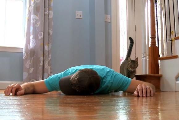 もし愛猫の前で苦しみながら倒れたらどんな反応をするのだろう?こうなった...