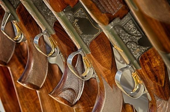 guns-467710_640_e