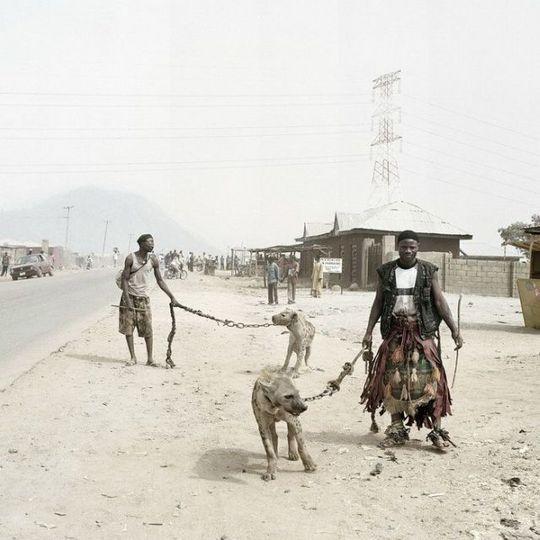 african_wild_pets_04