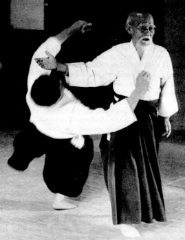 aikido_the_art_of_peace-tm