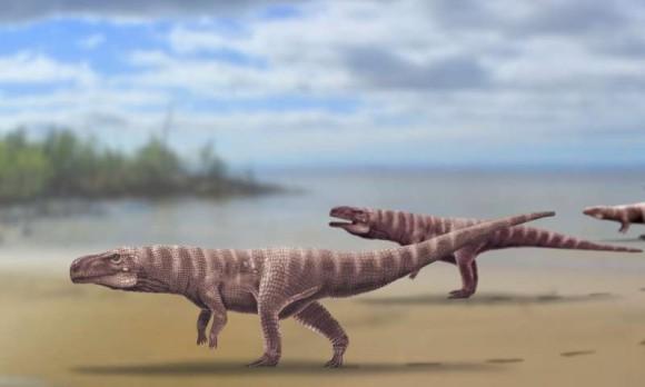 白亜紀に生息していた古代ワニは恐竜のように二足歩行していた