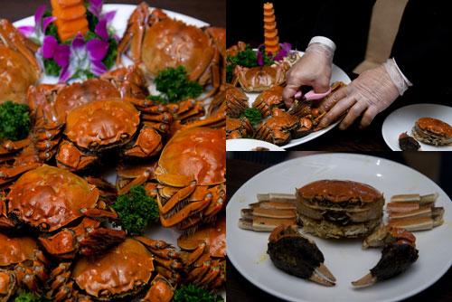 hairy_crab_dragon_i_2