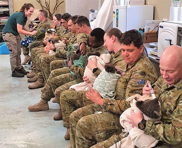 オーストラリア軍が一列に並び、コアラの赤ちゃんを抱っこして給餌