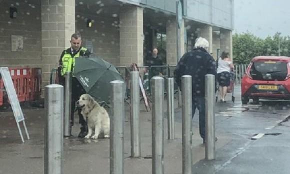 雨の中、飼い主を外で待つ犬に傘を差しかけ続けた警備員(イギリス)