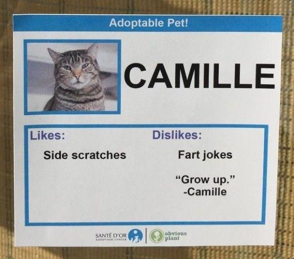 Camille_e