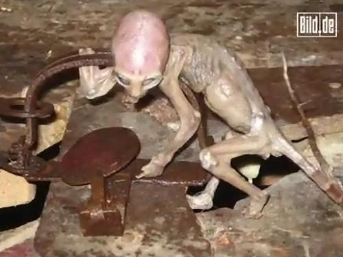 alien-36_e