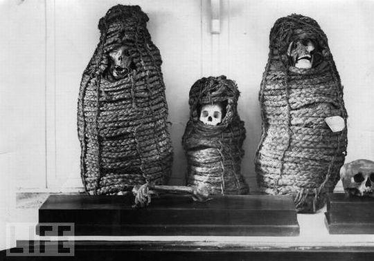 amazing_mummies_22