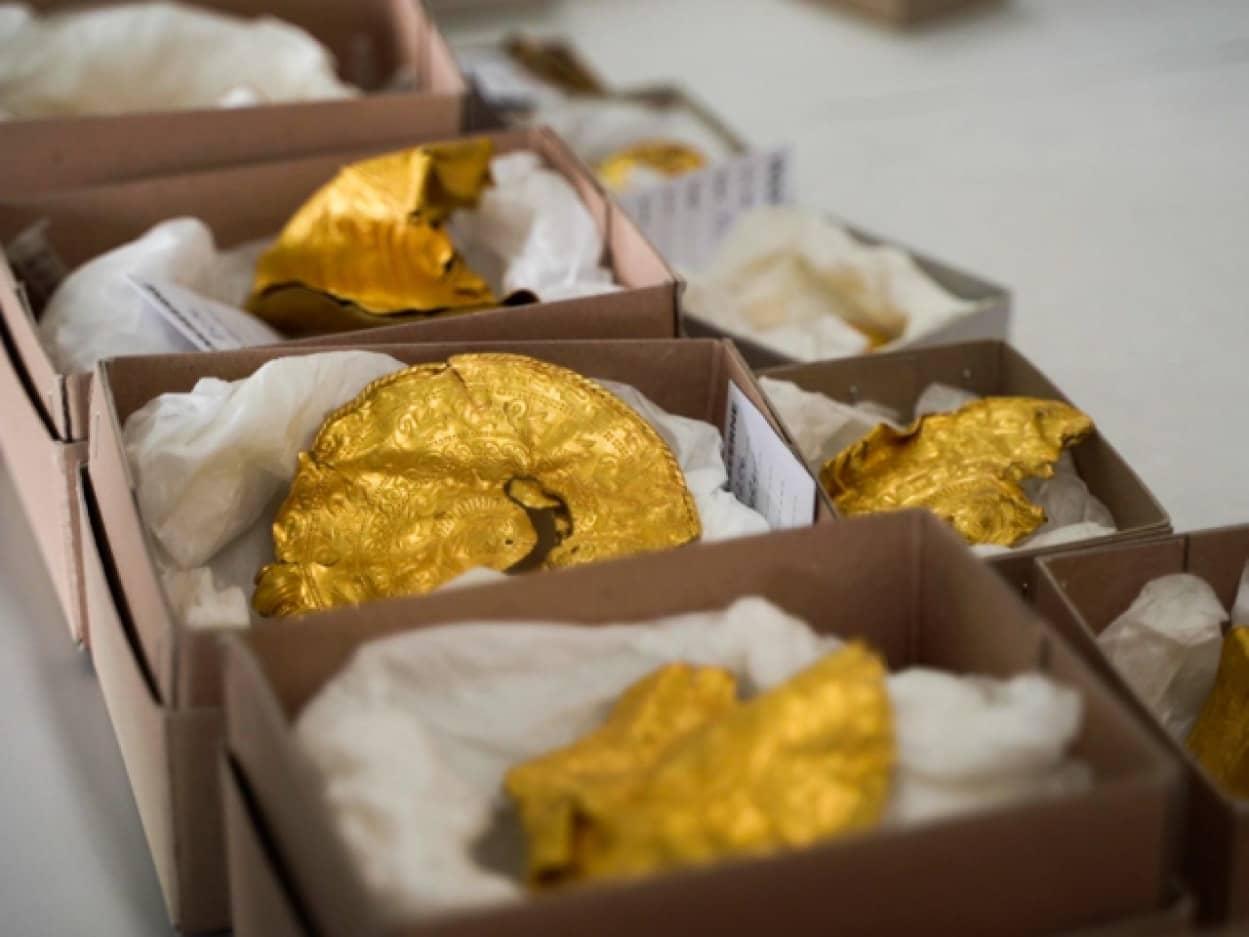 はじめて金属探知機を使用したら黄金のコインを発見
