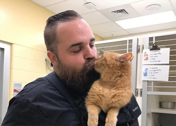 四六時中抱かれていたいの。抱かれたがりの15歳の保護猫にスタッフがとった対応にほっこりの連鎖(アメリカ)