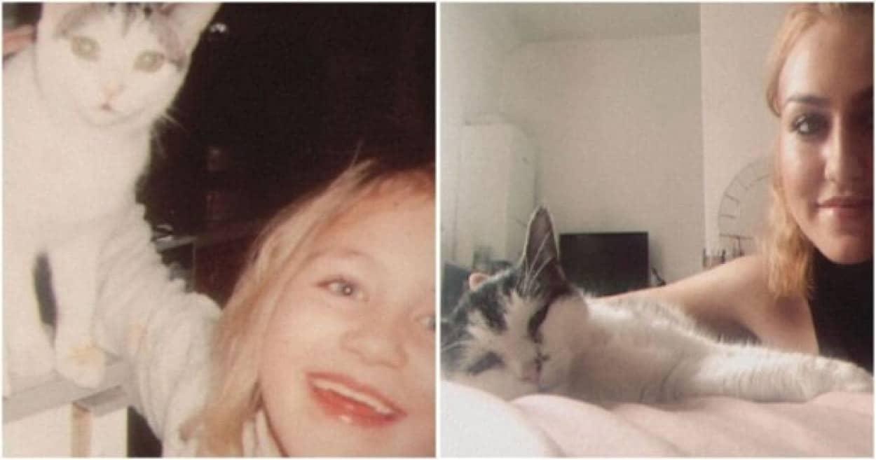 21年間一緒だった愛猫との思い出