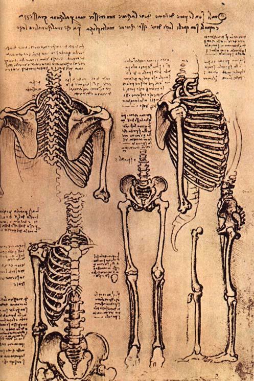 skeletonsre7