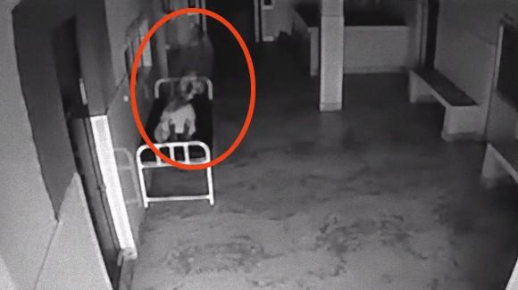 魂は存在するのか?死後病院のベッドで横たわる女性の体から白い物体が抜け出ていく瞬間をとらえた監視カメラ映像