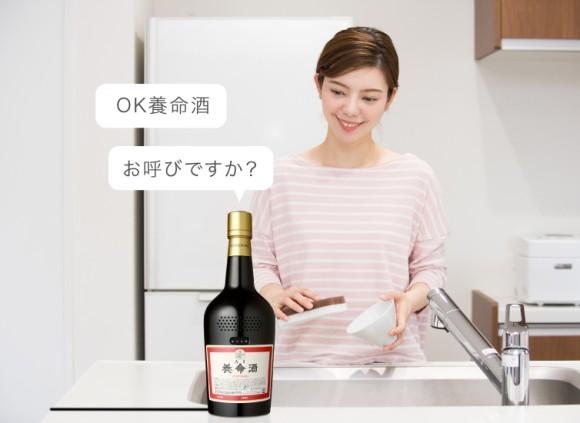 youmeisyu3_e