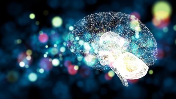 これまで未発見。人間の脳で発生するシグナルが新たに発見される(ドイツ・ギリシャ共同研究)