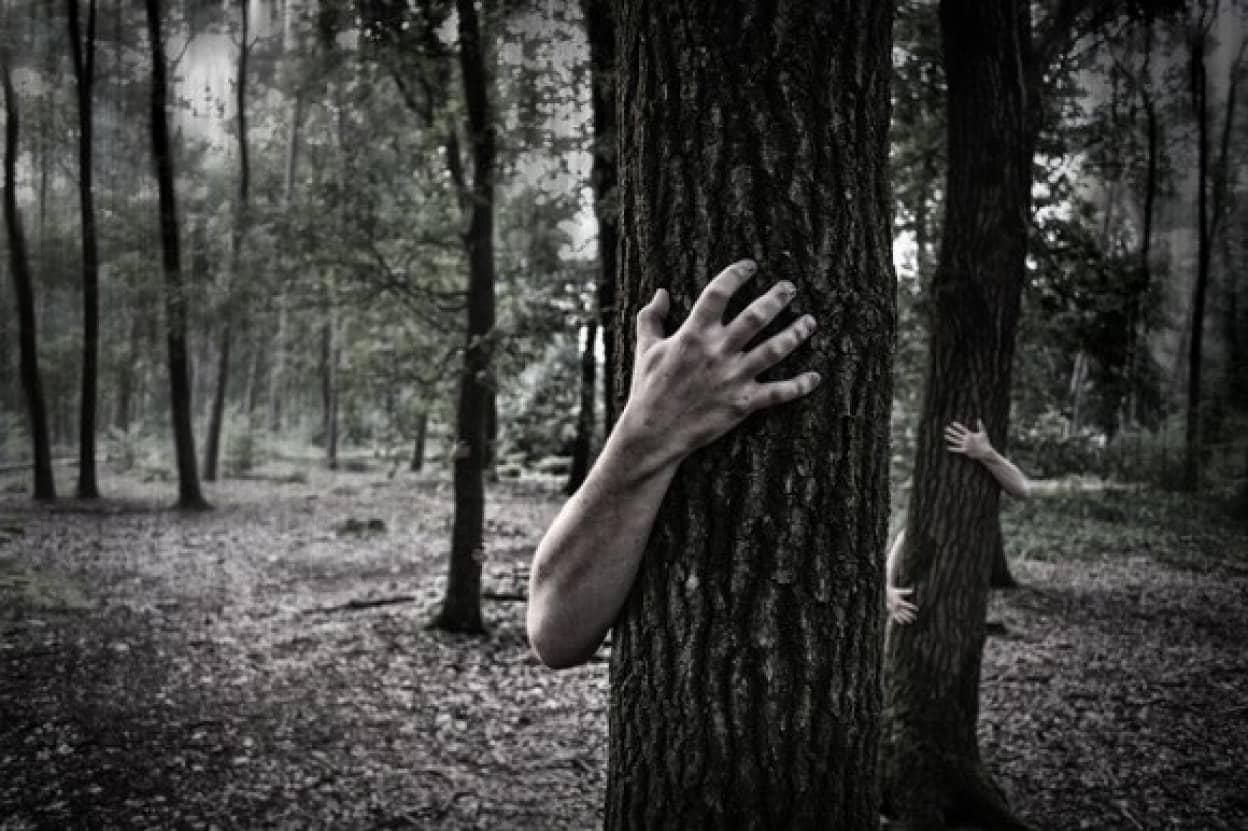 hands-984032_640_e