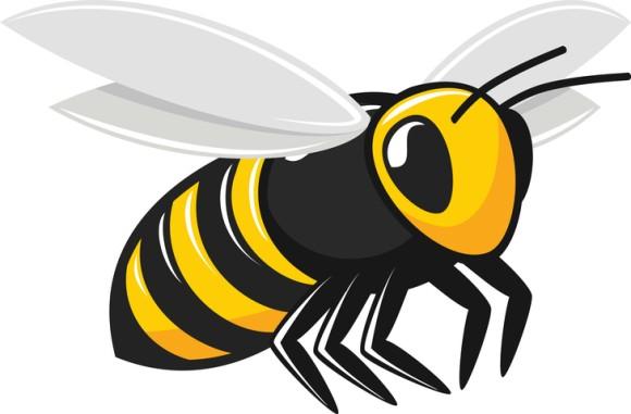 小さな存在だけど...ハチは人の顔を個別に認識できることが判明(国際研究)