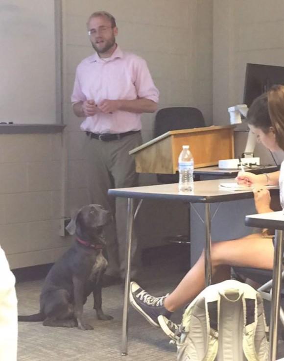 professor7_e