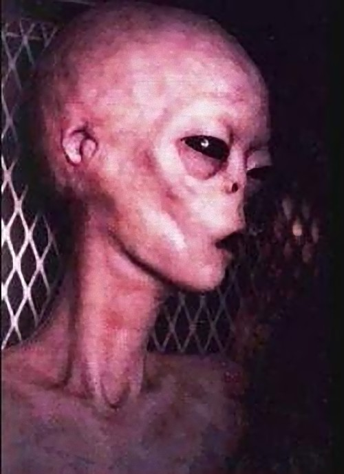 alien-3_e