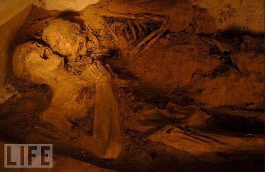 amazing_mummies_08
