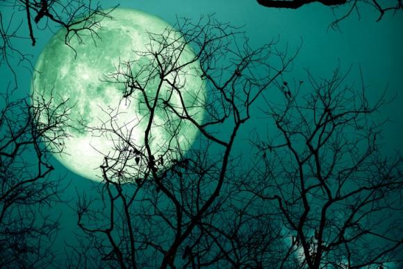 11月の満月は半影月食と共にやってくる