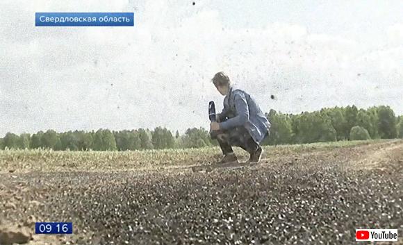 ザ・フライ。アポカリプス的終末の光景。ハエの大群が襲来したロシアの村(※ハエ大量出演中)