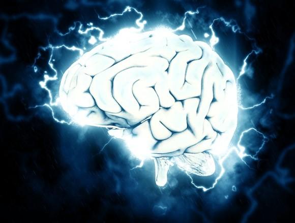 brain-1845962_640_e