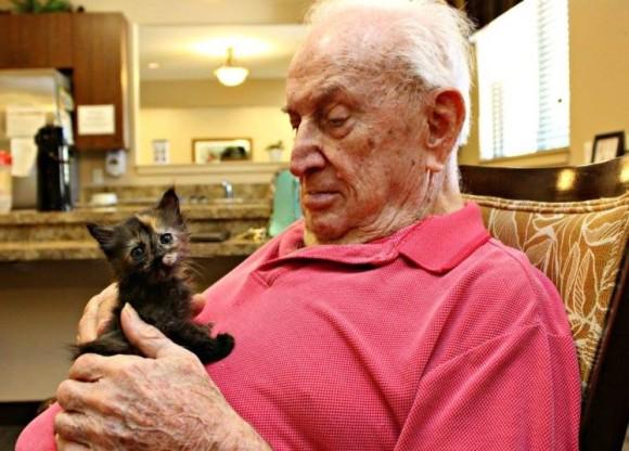 養護老人ホームの高齢者たちがぼっちになった子猫たちを育てるプロジェクトが発足。