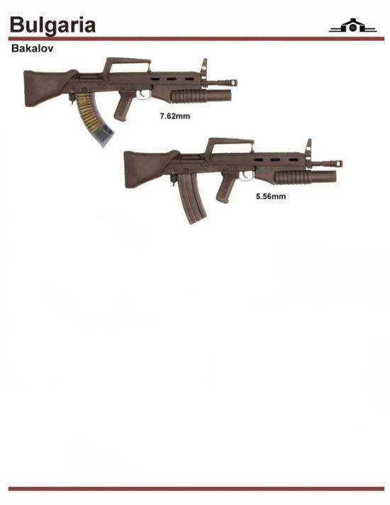 ... 国別軍用銃の種類 : カラパイア