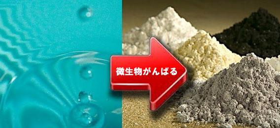 微生物を使い、工場排水からレアメタルを回収する技術を開発(日本研究)