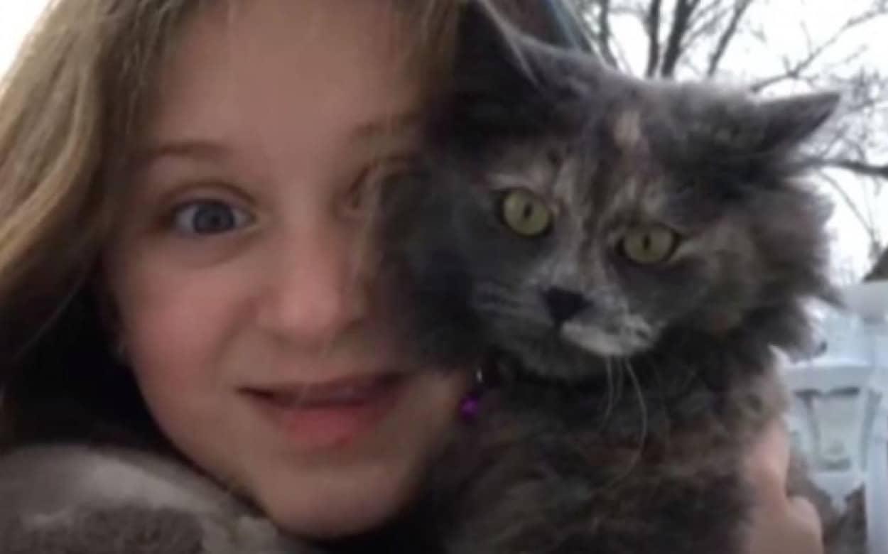 命がけで家族を火事から救った子猫