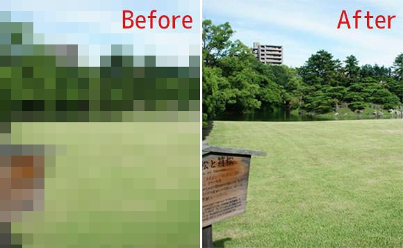 ゴミ拾いビフォア・アフターが世界的に流行っているけども、一方日本では?海外で話題となっていた