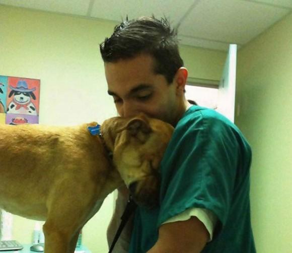 いつも本当にご苦労様!動物好きだから続けられる、獣医さんたちと動物たちのほのぼの画像