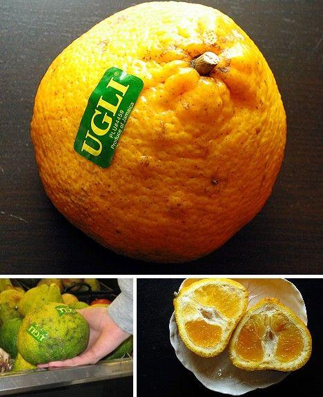 amazing_fruits_7