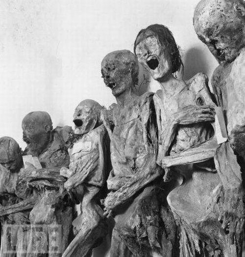 amazing_mummies_10
