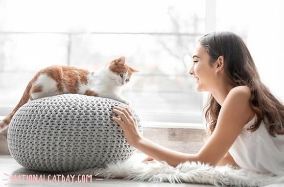 cat cover_e4