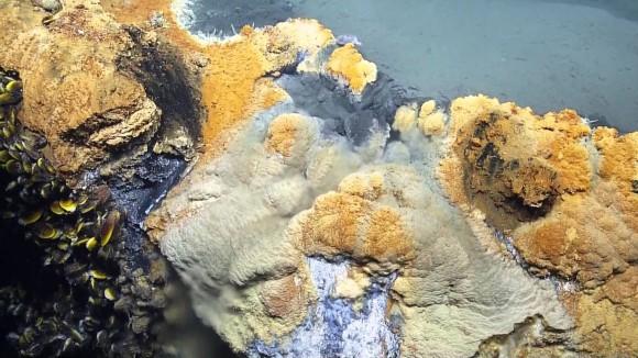 海底の湖の映像