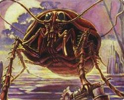 ゴキブリは危険を察知するとIQが340を超える(米研究)