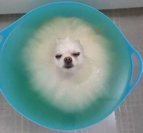bath3_e
