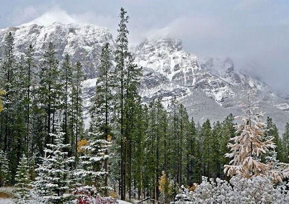 beautiful_winter_mountains_640_06