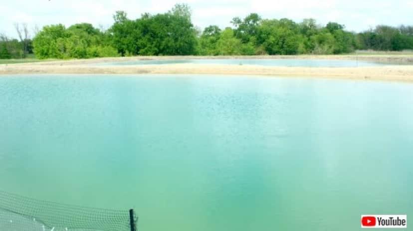 ponds1_640