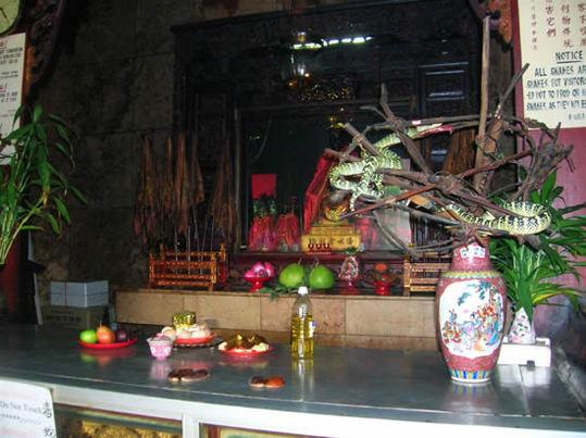 Snake-Temple-Penang6